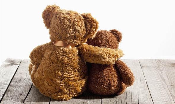 teddy-617287