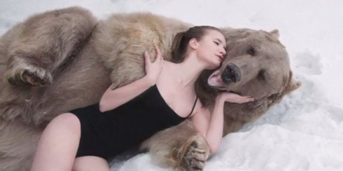 o-bear-models-russia-facebook-1