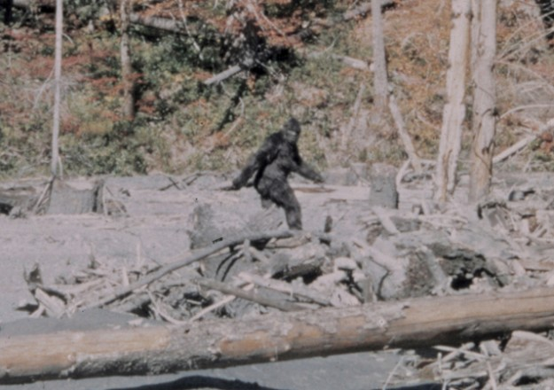 bigfoot-625x440